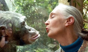 Jane-Goodall-the-worlds-f-001